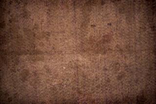 Mouldy carpet